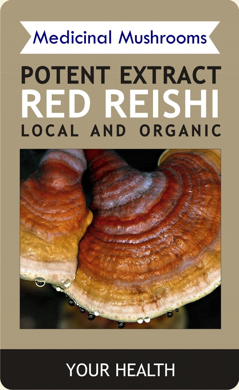 2017 MR RED REISHI