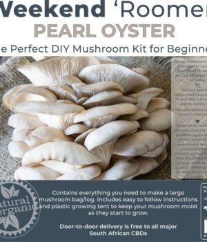 Weekend Mushroom Kit